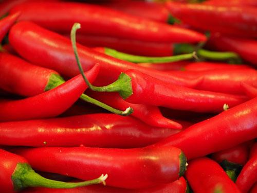 Jedna z odmian Chili