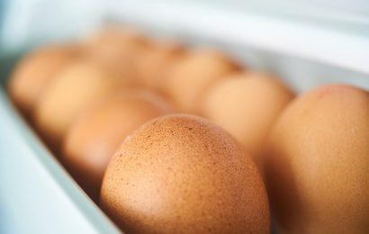 opakowanie jajek