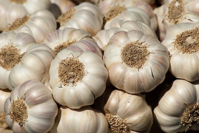 garlic-2097759_640