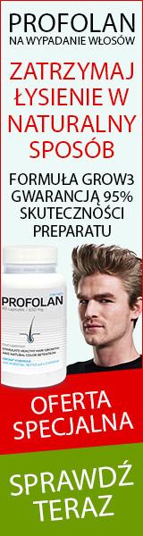 profolan_2_160x600